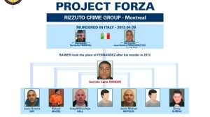 project forza